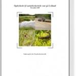 Lolland_skygge