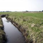 Mange åer er endt som afvandingskanaler for landbruget. Foto Peder Størup.