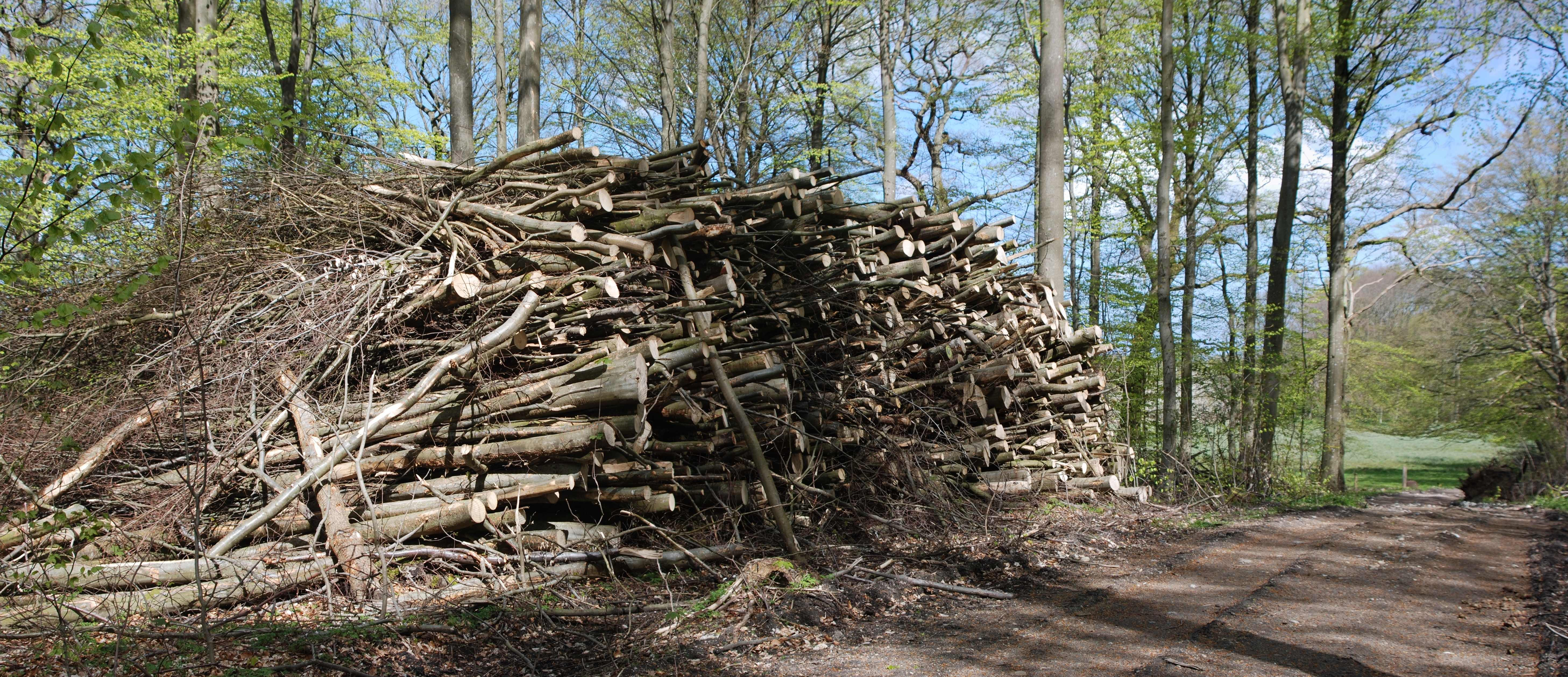 Træ til flisning 2MB